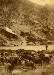 CORTE - Corse - Le Lac du Melo - 8 septembre 1913 (Copier) (Copier) copie