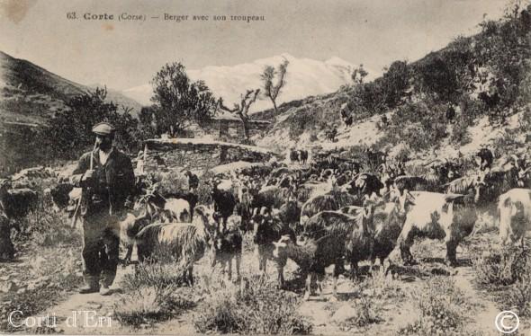 Berger avec son troupeau (Copier) copie