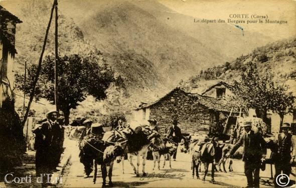 Corte - le départ des bergers pour la montagne (Copier) copie